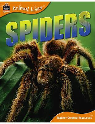 Spiders by Sally Morgan