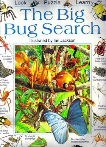 The Big Bug Search by Caroline Young