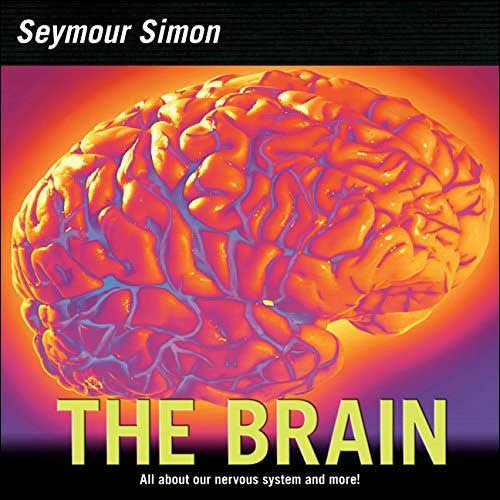 The Brain, Our Nervous System  by Seymour Simon
