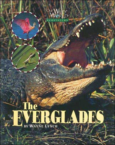 The Everglades (Our Wild World Ecosystems) by Wayne Lynch