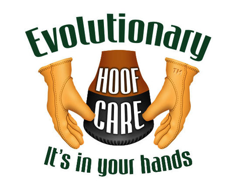 Natural Hoof Care