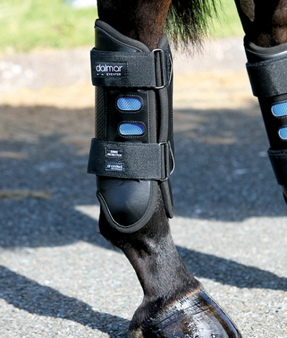 DALMAR-Eventer Back Boot