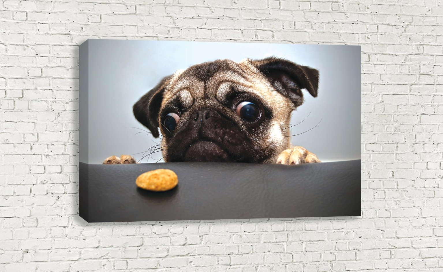 CUTE PUG FUNNY BISCUIT DOG WALL ART