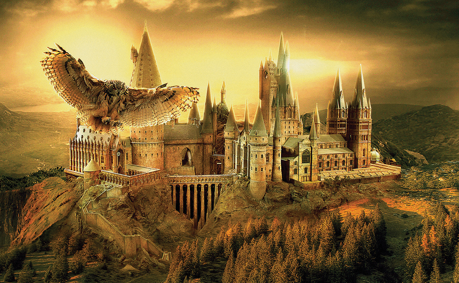 HARRY POTTER HOGWARTS SCHOOL OF WITCHCRAFT AND WIZADRY WALL ART ...