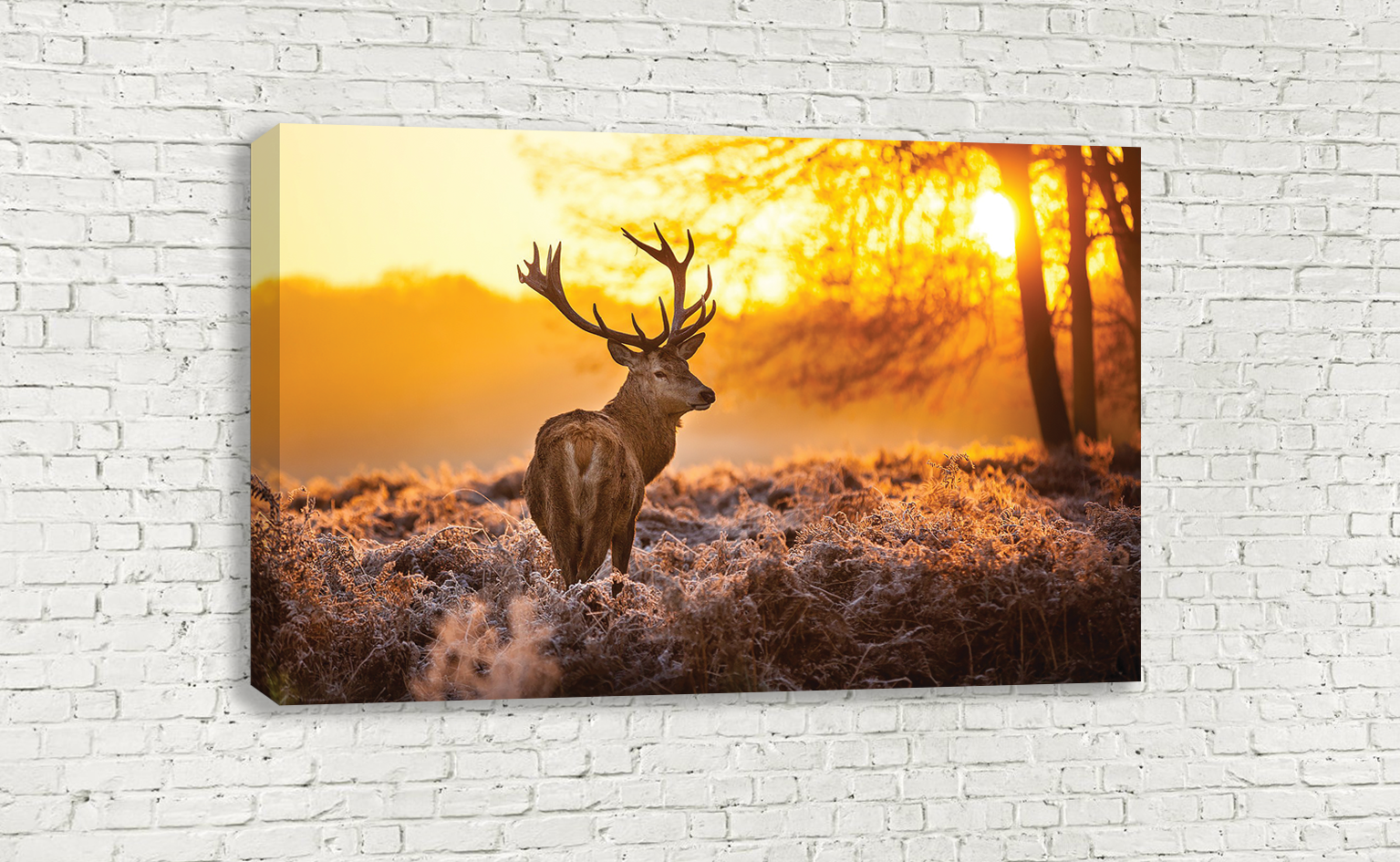 WILD STAG IN THE FOREST SUNSET SUNRISE DEER WALL ART