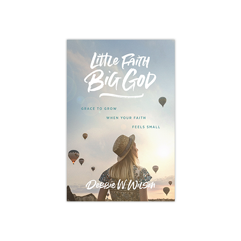 Little Faith, Big God: Grace to Grow When Your Faith Feels Small