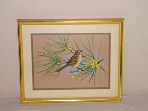 Watercolour Of A Pine Warbler Signed By Artist Greer Framed and Matted - Roadshow Collectibles