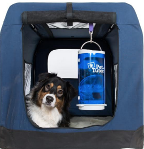 Pet Tutor in soft sided crate