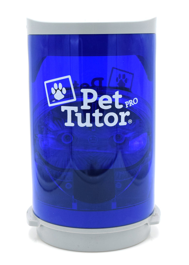 Shorty Pet Tutor