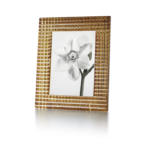 BACCARAT EYE PHOTOFRAME