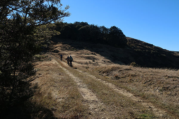 Once the purpose built climbing track finishes there is a short 4WD section to the top of the ridge