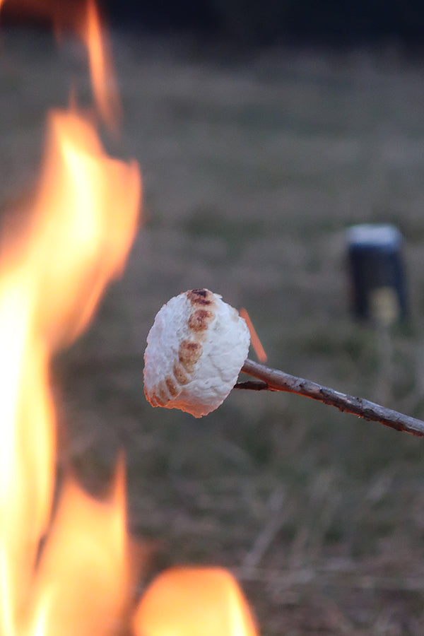Would it be a trip without toasted marshmallows?