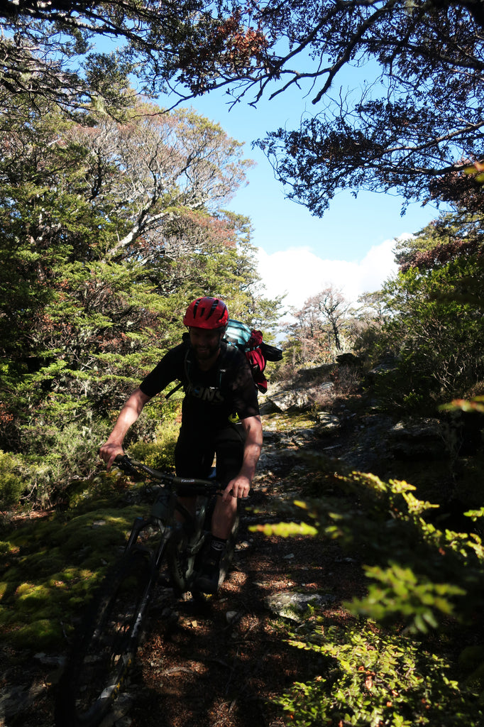 Riding MTB in Richmond Ranges