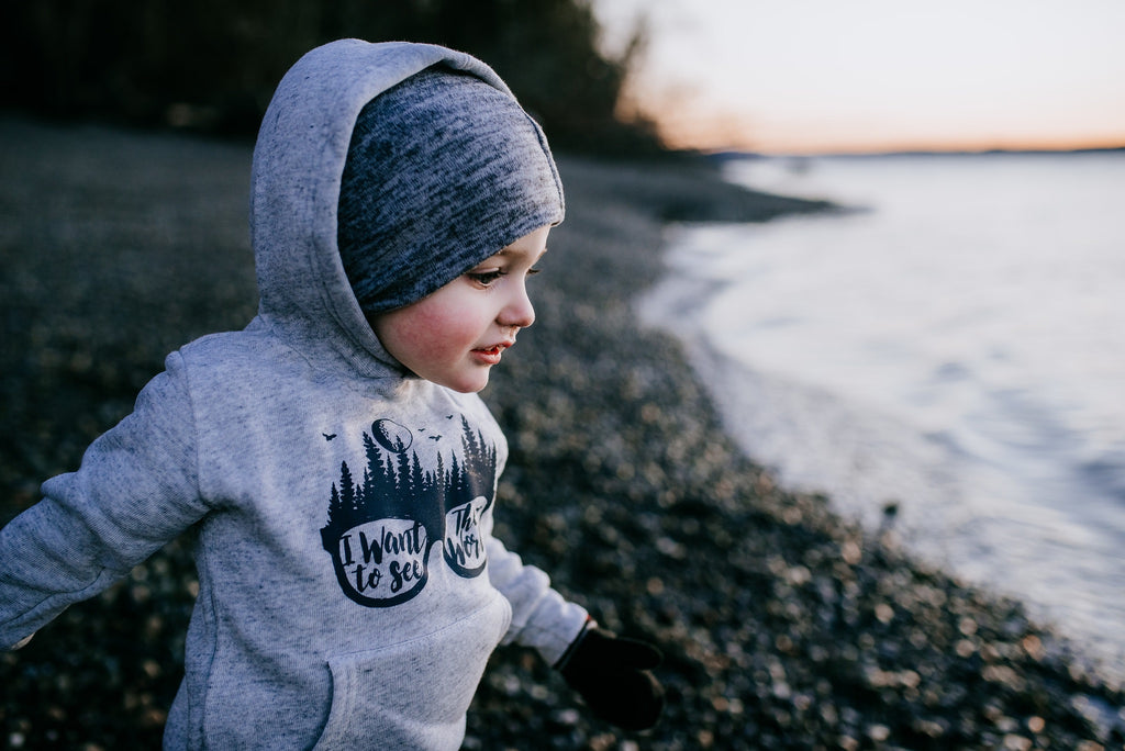 See the World  |  Toddler Hoody