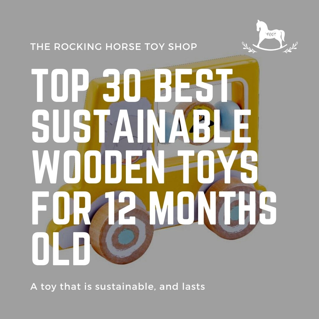 Top 30 Best Sustainable Wooden Toys for 12 months old