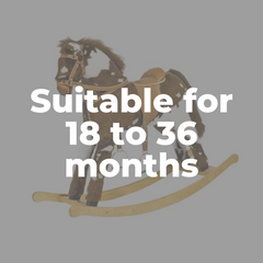 Rocking Horses and Animals for 18 to 36 months Old Toddlers