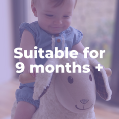 Rocking Horses and Animals for 9 months old babies