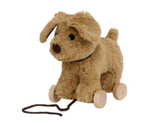 Dexter Dog Pull Along TOy