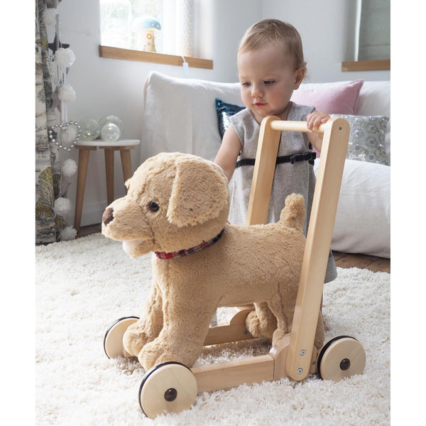 Push Along - Dexter Dog Push Along & Ride-On By Little Bird Told Me