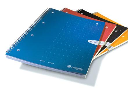 Notebooks 1-4, for Livescribe echo smartpen 4pk - Bridges Canada