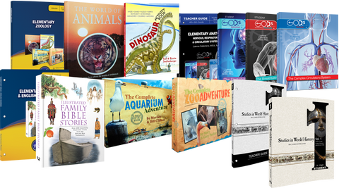 6th Grade Curriculum Set Answers Genesis History Science Anatomy 13 Books