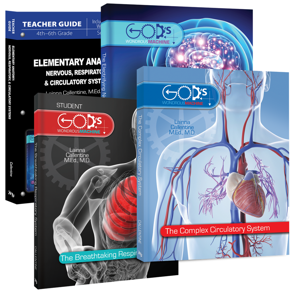 Elementary Anatomy Nervous & Respiratory System Curriculum Pack 2016