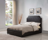 Dark Brown Faux Leather Nailhead Upholstered Platform Slat Bed With 2 Storage Drawers (Wood Frame) - Pilaster Designs