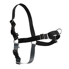 Easy Walk Harness - Nana's Pet Store - 1