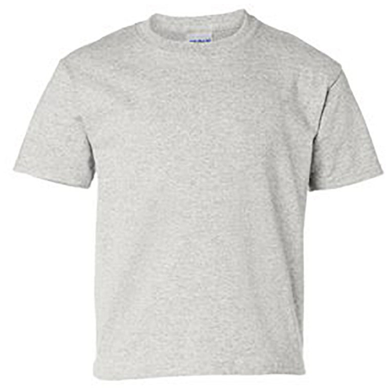 Youth 100% Ultra Cotton Short Sleeve T-Shirt ash