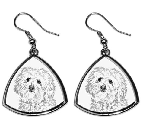 Bolognese Silver Plated Earrings