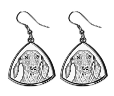 Dachshund Smooth Coat Earrings