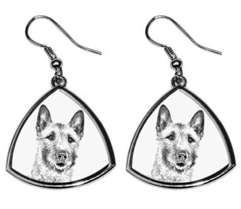 Laekenois Silver Plated Earrings