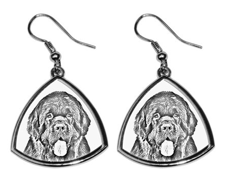 Newfoundland Silver Plated Earrings