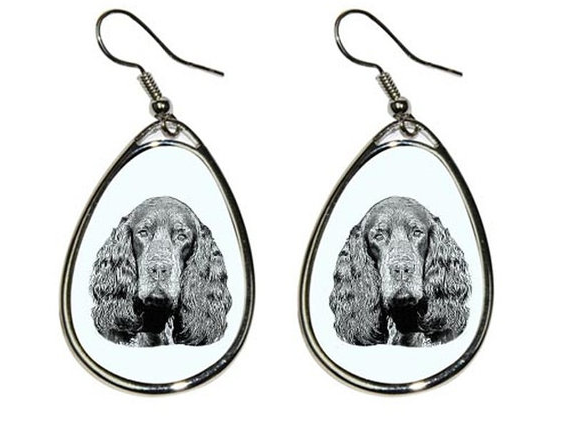 Setter Siolver Plated Earrings