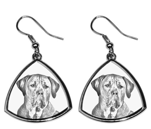 Tosa Silver Plated Earrings