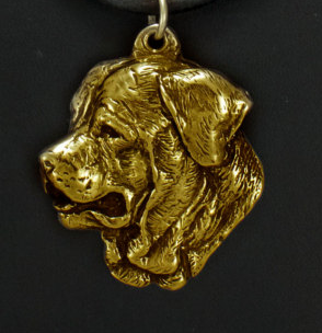Tosa hard Gold Plated Pendant
