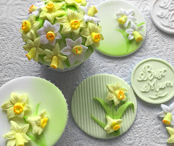 mothers day cupcake - daffodil cupcakes - Easter cake -  Ellam Sugarcraft Moulds For Fondant Or Chocolate