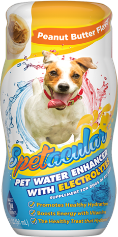 DOG VITAMIN WATER WITH ELECTROLYTES • PEANUT BUTTER • SINGLE BOTTLE