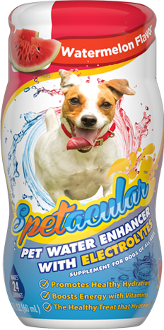 DOG VITAMIN WATER WITH ELECTROLYTES • WATERMELON FLAVOR • SINGLE BOTTLE