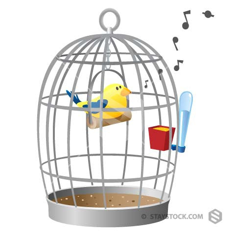 a bird in a birdcage singing a sweet tune