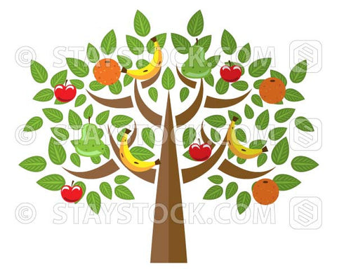 A fruit tree illustration with many different type of fruit grafted to the same tree.