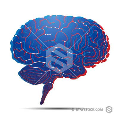 Blue red brain illustration