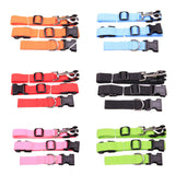 New waist pet dog leash running jogging puppy dog lead collar sport adjustable walking leash candy colors