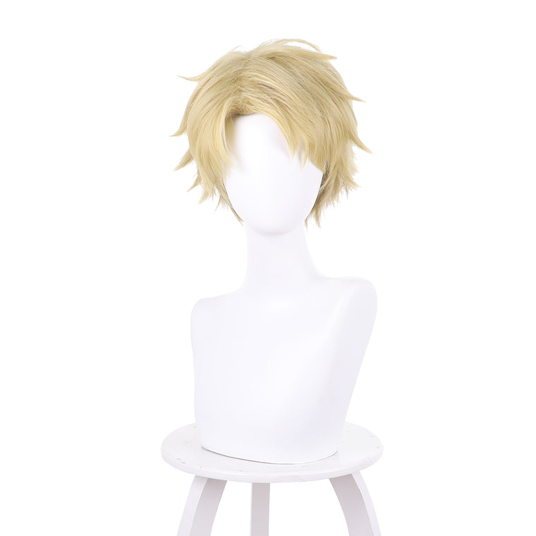Fate/Apocrypha Sieg Short Brown Ombre Anime Cosplay Wigs 235H