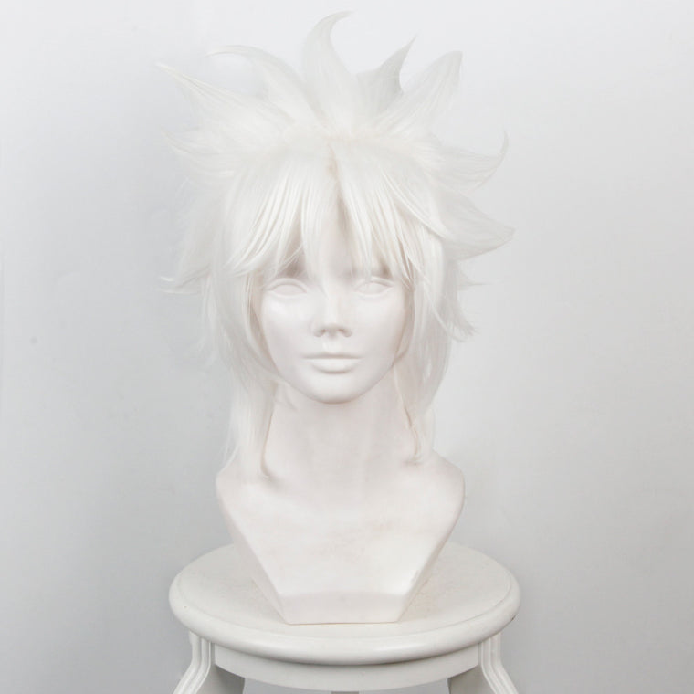 Fate/Apocrypha Amakusa Shirou Tokisada Short White Anime Cosplay Wigs 235I