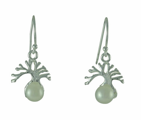 Boab Pearl Earrings - Sterling Silver