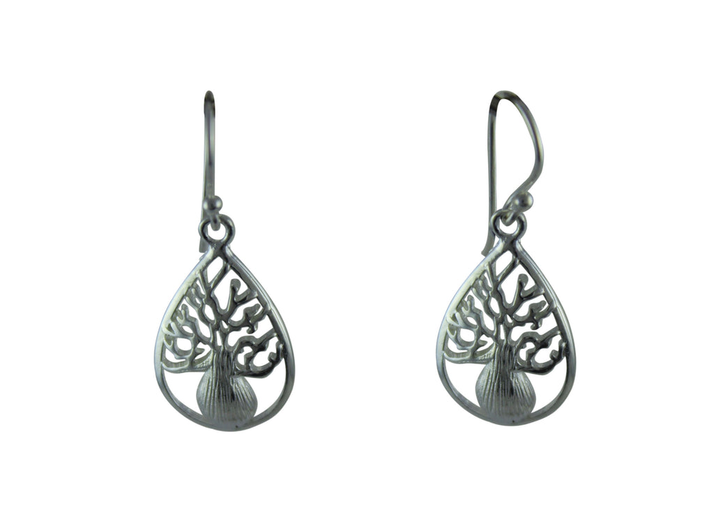 Teardrop Boab Earrings