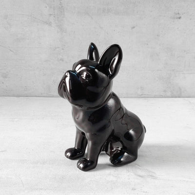 Andy Black French Bull Dog