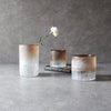 Salvador Blush Rim Glass Vases/Hurricane Candle Holders (Set of 3) - Home Artisan