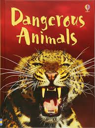 BEGINNERS : DANGEROUS ANIMALS